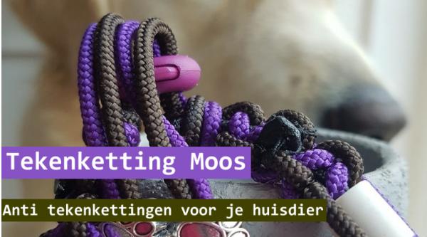Tekenketting Moos – nieuwe webwinkel
